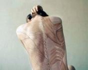 body-anatomy-anatomia